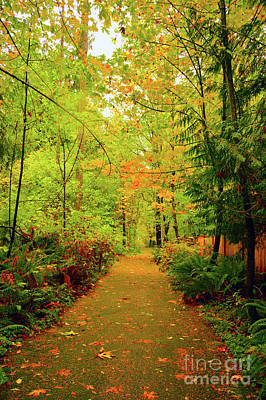 Fall Path Too Poster