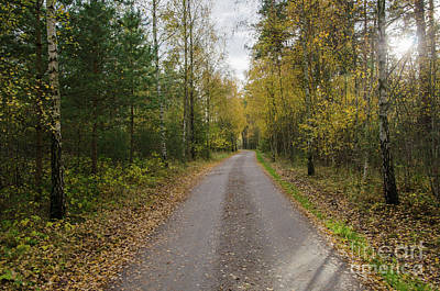 Poster featuring the photograph Fall Season Adventure by Kennerth and Birgitta Kullman