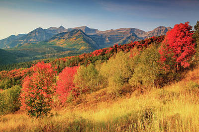 Poster featuring the photograph Fall Splendor With Mount Timpanogos. by Johnny Adolphson