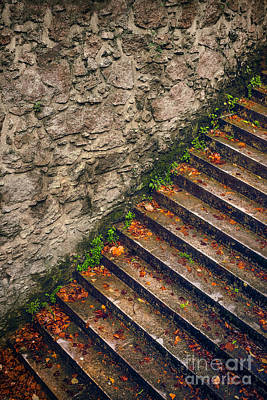 Fall Stairway Poster