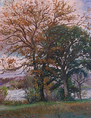 Fall Trees In An Autumn Sunset Poster