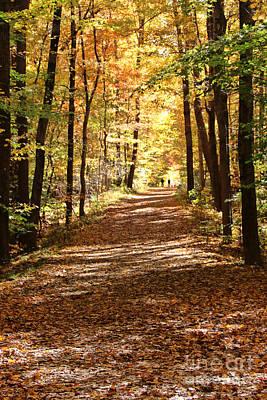 Fall Walk   2295 Poster by Jack Schultz