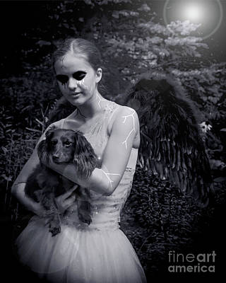 Poster featuring the photograph Fallen Angel by Rebecca Margraf