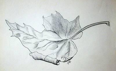 Fallen Leaf Poster by J R Seymour