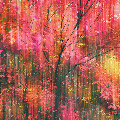 Poster featuring the photograph Falling Into Autumn by Jessica Jenney