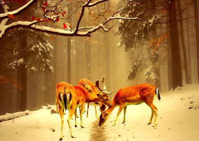 Fallow Deer Poster by Sharon Lisa Clarke