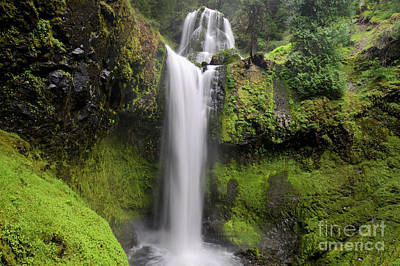 Falls Creek Falls In Washington  Poster
