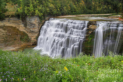 Autumn Flower Of Letchworth Middle Falls Poster