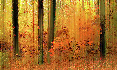 Poster featuring the photograph Fanciful Forest by Jessica Jenney