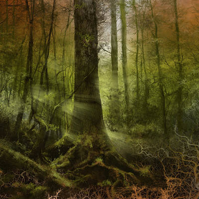 Fantasy Forest 2 3 Poster