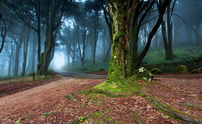 Poster featuring the photograph Fantasy by Jorge Maia