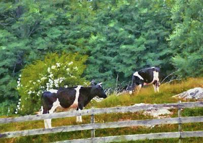 Farm - Cow - Moo  Poster