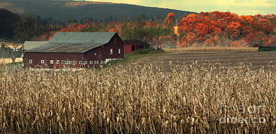 Farm Fall Colors Poster by Chuck Kuhn