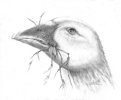Farm Goose Poster