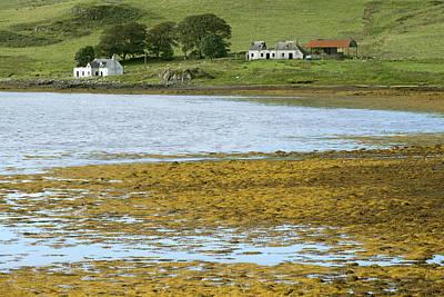 Farm In Isle Of Skye, Uk Poster