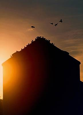 Farm Silo Sunset Poster by Dan Sproul