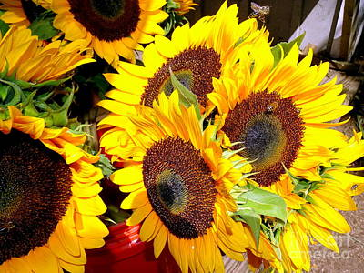 Farm Stand Sunflowers #2 Poster by Ed Weidman