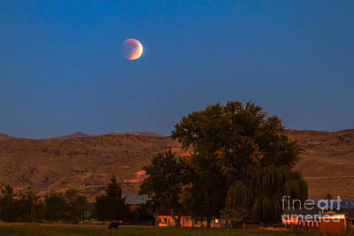 Farm View Of Supermoon Eclipse Poster by Robert Bales