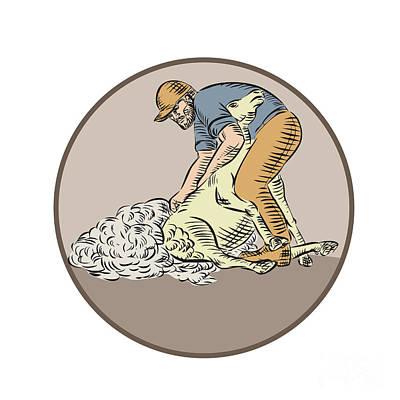 Farmworker Shearing Sheep Circle Etching Poster by Aloysius Patrimonio