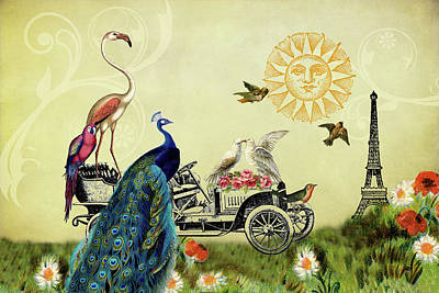 Feathered Friends In Paris, France Poster by Peggy Collins