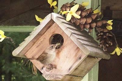 Poster featuring the digital art Feeding Birds by Barbara S Nickerson