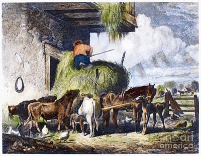 Feeding Livestock, 1873 Poster by Granger