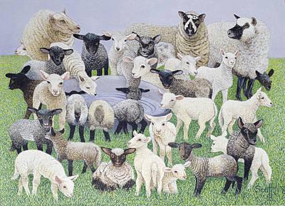 Feeling Sheepish Poster by Pat Scott