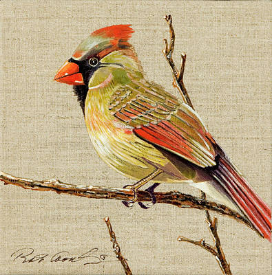 Poster featuring the painting Female Cardinal by Bob Coonts