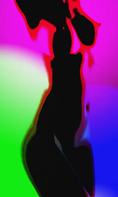 Female In Color 2 Poster by Steve K