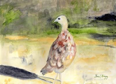 Female Pheasant Poster by Janel Bragg
