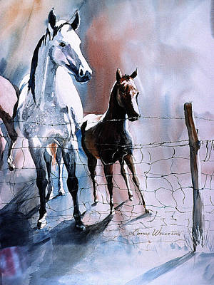 Fence Line Horses Poster