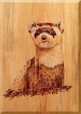 Ferret Poster by Ron Haist