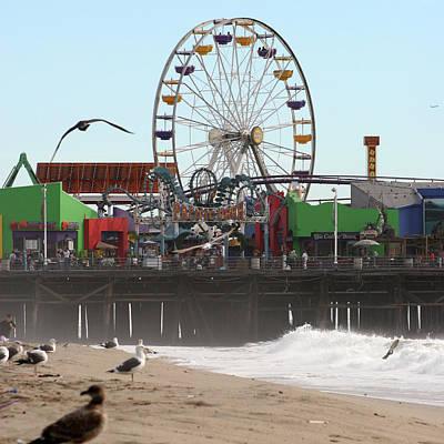 Ferris Wheel At Santa Monica Pier Poster