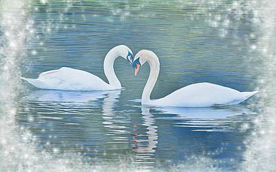 Festive Swan Love Poster by Diane Alexander