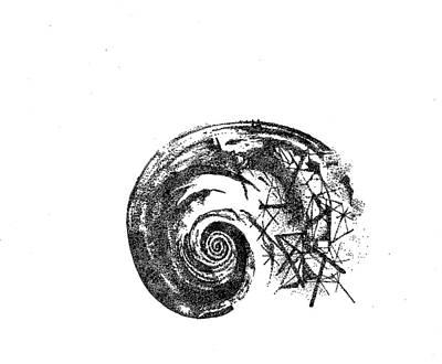 Fibonacci Poster by Drilona Maqedonci