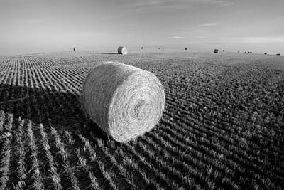 Field Full Of Bales In Black And White Poster