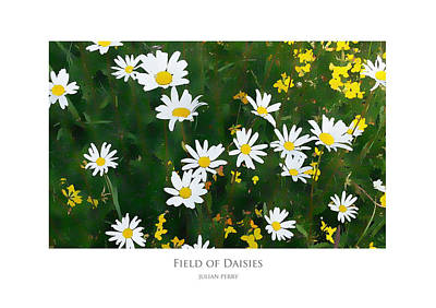Poster featuring the digital art Field Of Daisies by Julian Perry