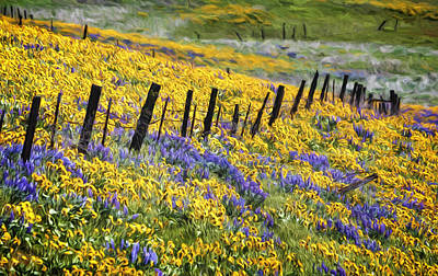 Field Of Gold And Purple Poster