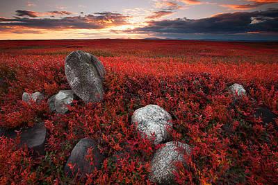 Fields Of Autumn Poster