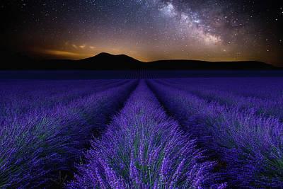 Fields Of Eden Poster