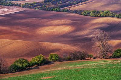 Fields Patterns. Moravian Tuscany Poster