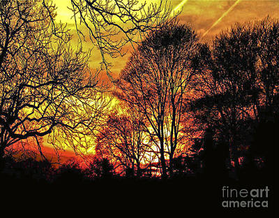 Fiery Red Sunset Poster by Carol F Austin