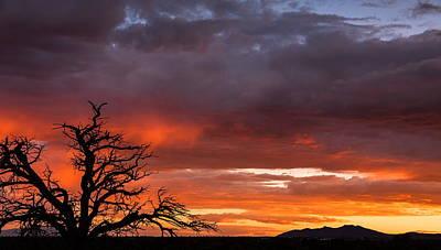 Fiery Sunset Poster by Elena E Giorgi