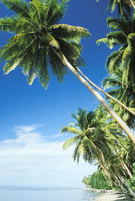 Fiji, Vanua Levu Poster by Peter Stone - Printscapes