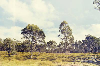 Fine Art Australia Landscape. Retro Tasmania Field Poster by Jorgo Photography - Wall Art Gallery