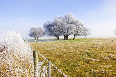 Fine Art Winter Scene Poster by Jorgo Photography - Wall Art Gallery