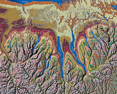 Finger Lakes Of New York Contour Map Poster