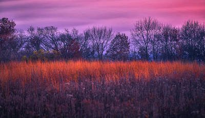 Fire And Ice - Sunset And Prairie At Retzer Nature Center Poster by Jennifer Rondinelli Reilly - Fine Art Photography