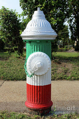 Fire Hydrant On The Hill In St. Louis, Missouri Poster