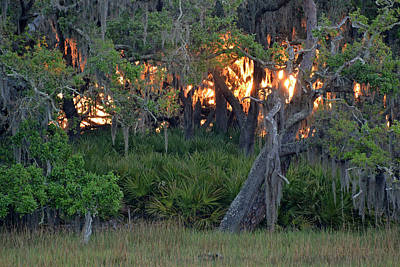 Poster featuring the photograph Fire Light Jekyll Island 02 by Bruce Gourley